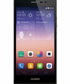 P7 Ascend  Black